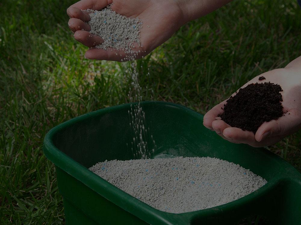 Salem Fertilization