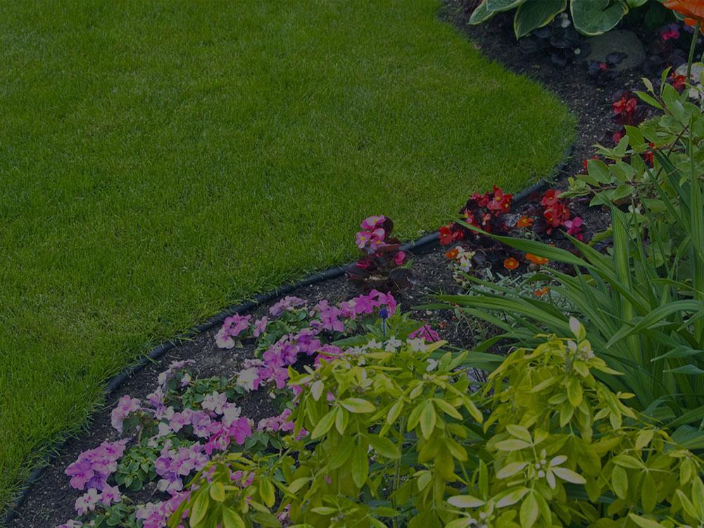 Salem Garden Design