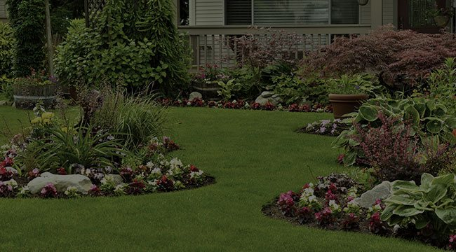 North Andover Landscape Design